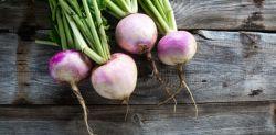 Le-navet-un-legume-qui-fait-maigrir-710x350.jpg