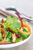 r228-1-salade_mache_zestes_orange.jpg